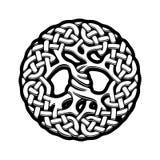 Celtic Tree of Life. Black and white illustration of celtic tree of life, vector illustration royalty free illustration