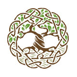 Celtic Tree of Life. Illustration of celtic tree of life, color version, vector illustration Royalty Free Illustration
