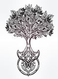 Celtic tree of life illustration. Royalty Free Stock Image