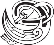 Celtic viking duck. Tattoo design of a Celtic viking animal of a duck biting its own neck Stock Photos