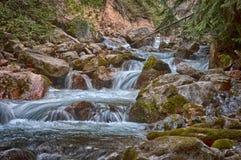 Sinclair Creek. At Raduim Hot Springs, British Columbia, canada Stock Image