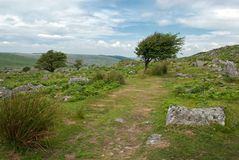 Bodmin Moor At Minions Stock Photography