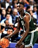 Celtics Dee Брайна Бостона Стоковое фото RF