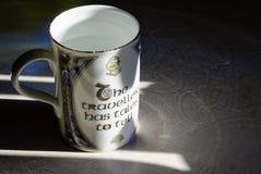 Celtycki irlandczyka Knotwork i kubek odbicie obrazy royalty free