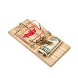 Cem dólares de Bill na armadilha do rato Imagem de Stock Royalty Free
