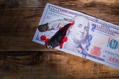 Cem notas de dólar com a pena na cabeça do presidente e do bl foto de stock royalty free