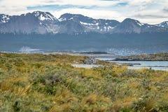 Cembruje dom w wyspy i gór widoku w Beagle kanale - Ushuaia, Tierra Del Fuego, Argentyna Zdjęcia Royalty Free