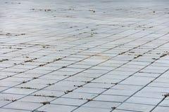 Cementów bloki brukują na ziemi zdjęcia stock