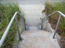 Cementów kroki z wysoką trawą Obraz Royalty Free