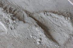 Cement är en pulverjordning från brutna påsar Royaltyfri Fotografi