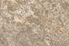 Cement background texture. Cement wall textured closeup background Royalty Free Stock Photos
