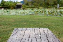 Cement bench in wood like surface with blur garden background Stock Photo