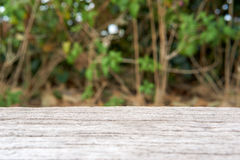 Cement bench in wood like surface with blur tree background Stock Images