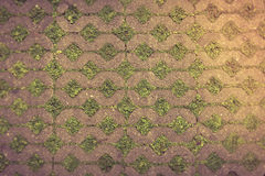 Cement block pattern with grass floor. Landscape details Stock Image