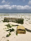 Cement blocks on the beaches of Zanzibar Royalty Free Stock Photos