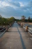 Cement bridge to the sea Stock Images