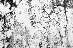 Cement Cracked Background Royalty Free Stock Image