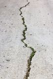 Cement cracked road. Stock Image