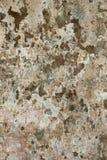 Cement för väggbakgrundstextur skalar befläckt ojämn blick för lappar grunge arkivfoton