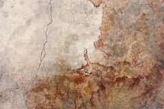 The cement floor, blood stains Stock Photo