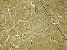 Cement floors are cracked Royalty Free Stock Photography