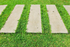 Cement footpath on green grass Stock Photography