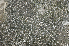 Cement gravel texture Royalty Free Stock Image