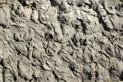 Cement grout closeup texture. Rough plaster background.  Royalty Free Stock Image