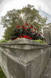 Cement Planter Royalty Free Stock Images