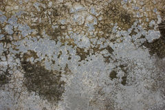 Cement plaster texture. The gray cement plaster texture royalty free stock photography