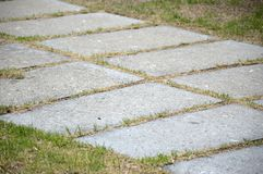 Cement plate on green grass Royalty Free Stock Photos