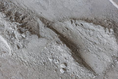 Cement is a powder ground from broken bags. Royalty Free Stock Photography