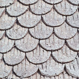 Cement roof Stock Photography