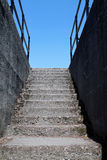 Cement Stairs Leading From a Basement to Daylight Stock Image