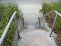 Cement Steps with tall Grass Royalty Free Stock Image