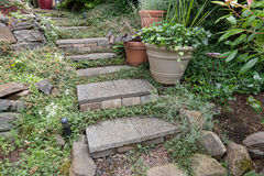 Cement Stone Steps to Backyard Garden Royalty Free Stock Image