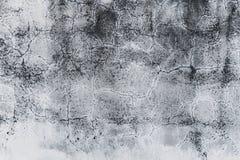 cement textur Arkivfoton