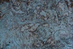 cement textur Royaltyfria Foton