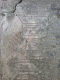 Cement texture broken pattern Stock Images