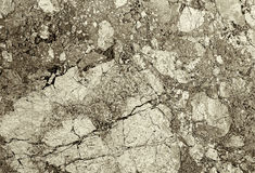 Cement wall Stock Images