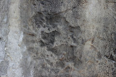 Cement wall with cracks, and loose pieces of paint dirty texture Stock Images