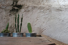 Cement wall decorative with cactus and rough wooden table. Have some space for write wording. Background Royalty Free Stock Photo