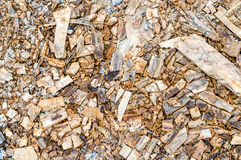 Cement wall and scraps of wood ground,texture background Royalty Free Stock Images
