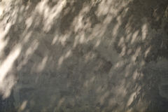 Cement Wall with shadow from the leaves of tree Stock Photo