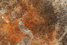 Cement wall texture Royalty Free Stock Images