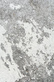 Cement wall texture dirty rough grunge background Royalty Free Stock Photography