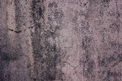 Cement walls. Old musty surface Royalty Free Stock Image