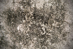 Cement walls. Royalty Free Stock Image