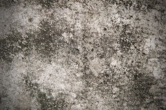 Cement walls. Stock Images