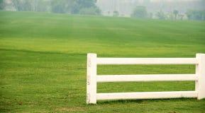 Cement white fence , White fence , grass. Stock Photos